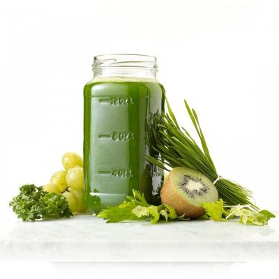 100% Chef - 100% Chef Omega Slow Juicer Meyve ve Sebze Sıkacağı (1)